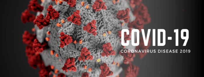 Coronavirus banner that links to website